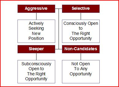 Image representing how we break all candidates down into 4 separate categories - using our process you can get Selectives and Sleepers instead of Aggressive Candidates